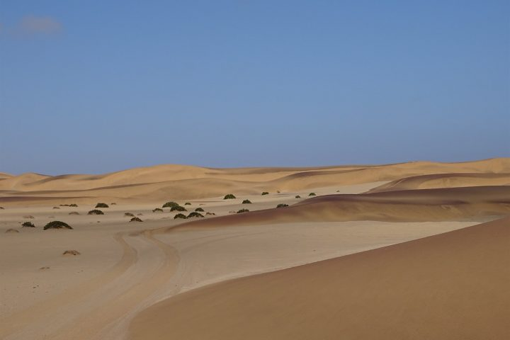 Dünenlandschaft bei Swakopmund