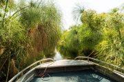 Bootsfahrt im Okavango Delta - Botswana
