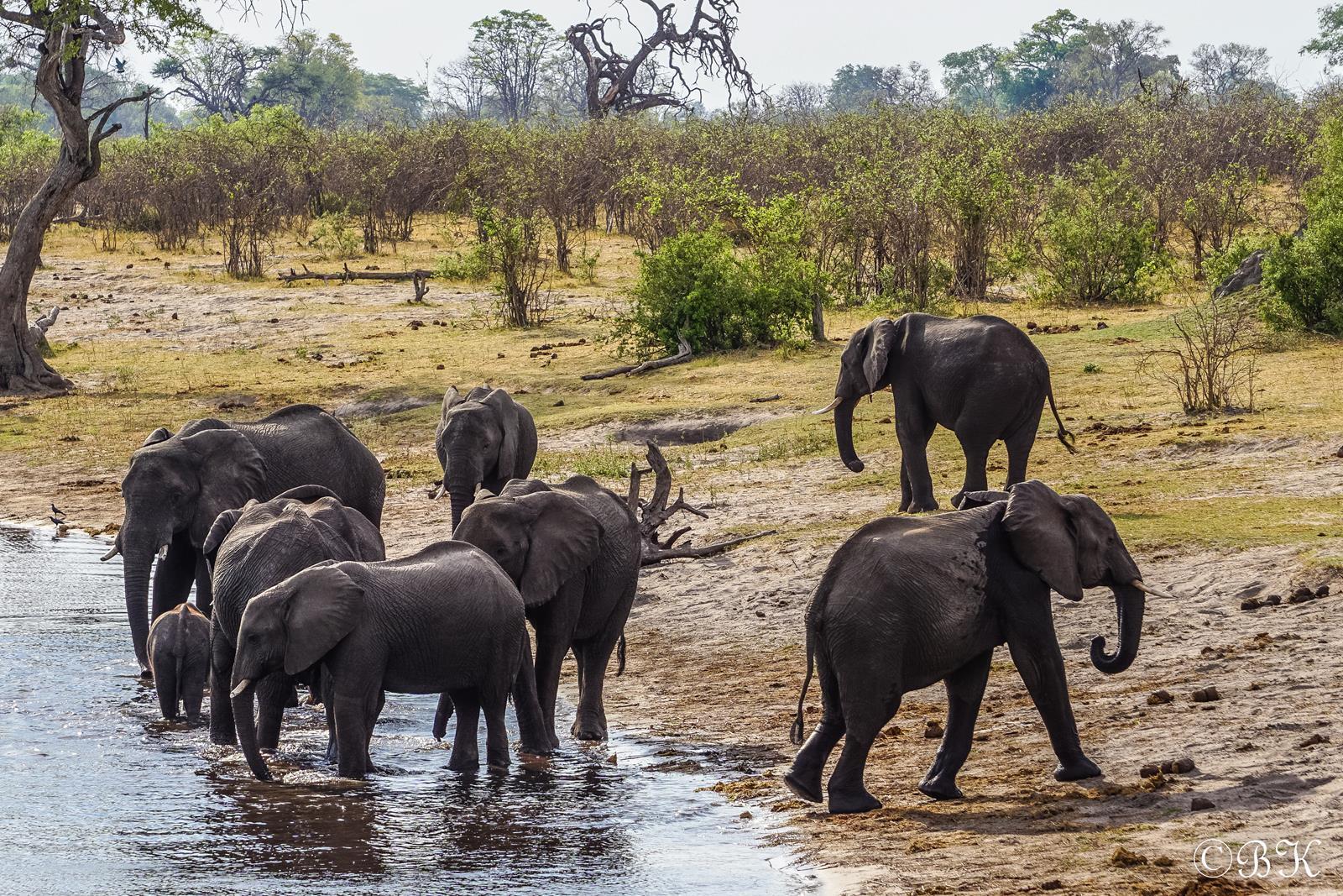 drei Länder – vier Flüsse – Camping Safari – 18 Tage