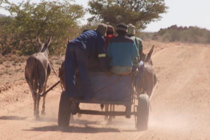 Donkey Car -typisches Fortbewegungsmittel