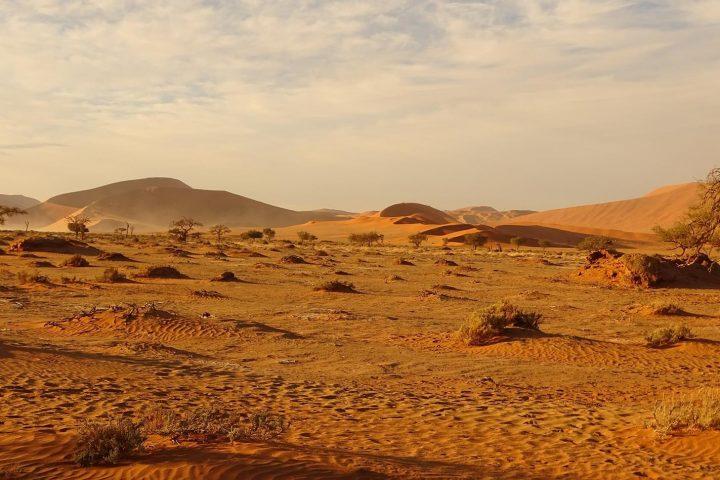 Landschaft bei Sossusvlei