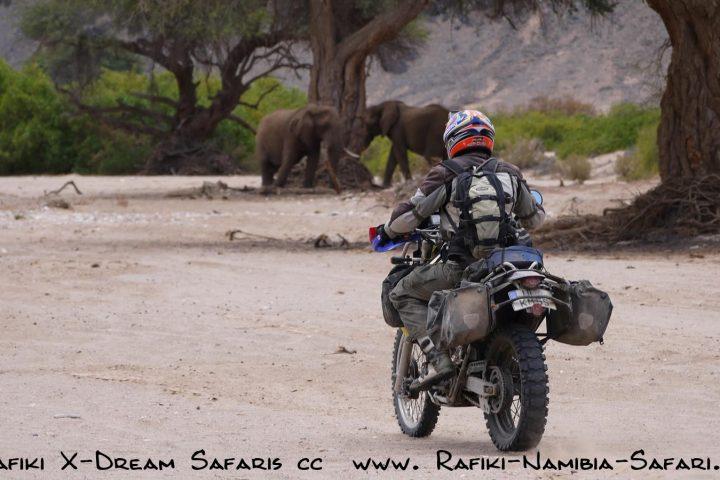 Motorrad im Kaokoveld- Elefanten