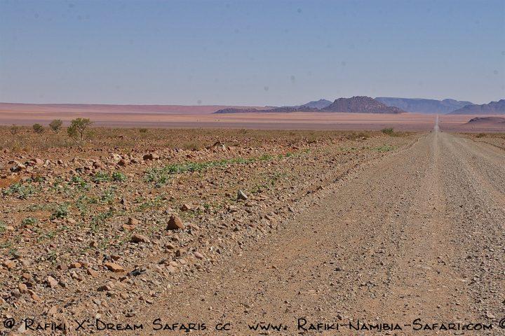 Namibia- traumhafte Weite des Südens