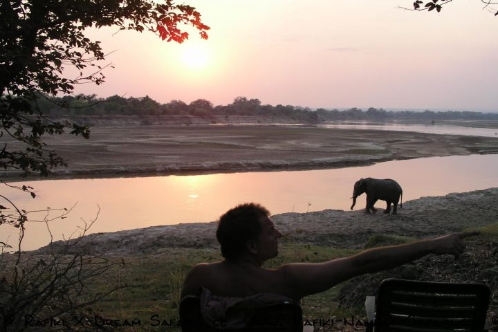 Elefantenbesuch im Wildlife Camp am South Luangwa Park- Sambia