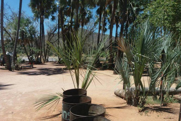 Camp an den Epupa Wasserfällen