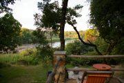 Blick auf den Shire River