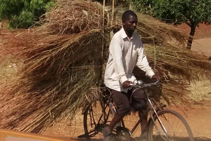Malawi- alles wird mit dem Fahrrad transportiert