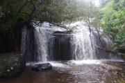 auf dem Zomba Plateau